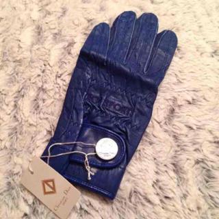 クリスチャンディオール(Christian Dior)の新品♡正規品 ディオール♡手袋(手袋)