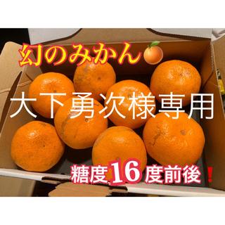 熊本県 幻の河内みかん 5kg  3kg    ☆完熟無農薬ミカン☆ 農家直送(フルーツ)