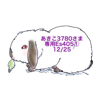 ★12/25★あきこ3780さま専用ページ405(その他)