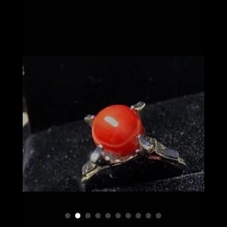 天然血赤珊瑚のリング 11号(リング(指輪))