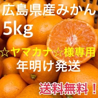 【☆ヤマカナ様☆専用】大崎上島産 みかん 5kg 広島 瀬戸内 普通温州(フルーツ)