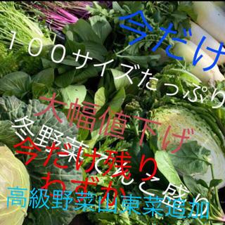 残りわずか冬野菜詰め合わせるんちゃん専用(野菜)