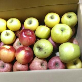 葉月様専用 早いものがち。サービス品 規格外 りんご詰め合わせ 箱込み8kg(フルーツ)