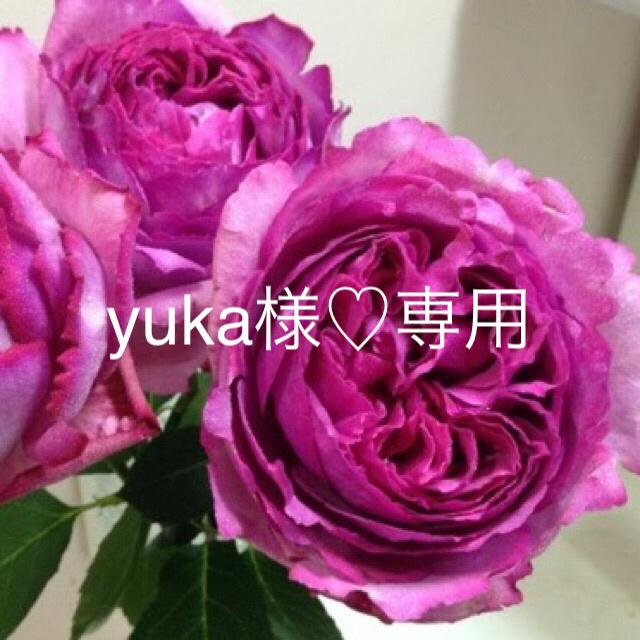 yuka様専用♡ウェディング用ヘッドパーツ ハンドメイドのフラワー/ガーデン(ドライフラワー)の商品写真