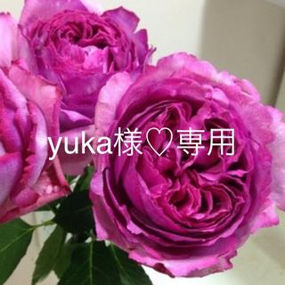 yuka様専用♡ウェディング用ヘッドパーツ(ドライフラワー)