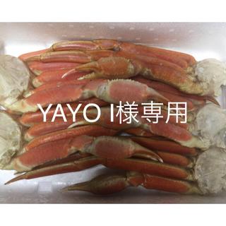 特大ズワイ蟹足 5L 4kg  送料無料(魚介)