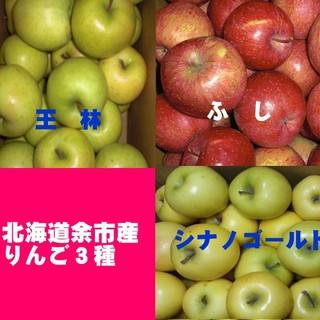 北海道産余市町りんご3種【ふじ】【王林】【シナノゴールド】訳あり品5キロ(フルーツ)