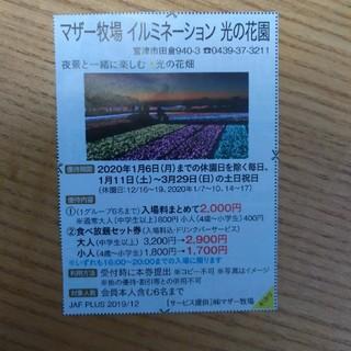 マザー牧場 イルミネーション 割引き券(遊園地/テーマパーク)