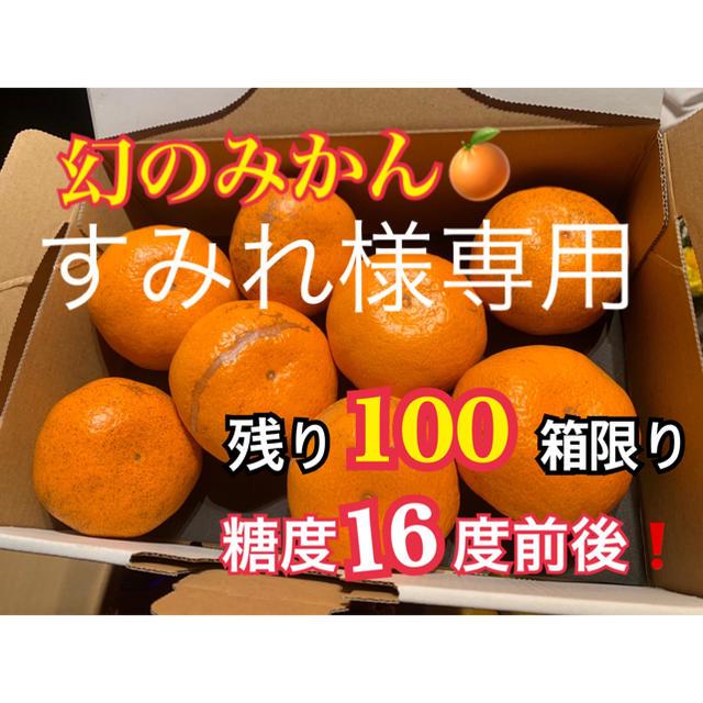 すみれ様専用 幻の河内みかん20kg 食品/飲料/酒の食品(フルーツ)の商品写真