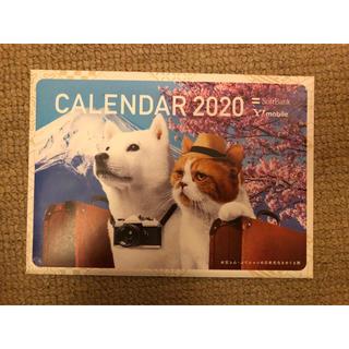 ソフトバンク(Softbank)の【非売品】お父さん犬・ふてニャン卓上カレンダー(ノベルティグッズ)