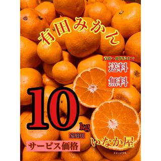 有田みかん 家庭用 セール ミカン 10kg(フルーツ)
