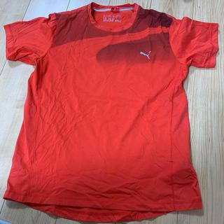 プーマ(PUMA)のTシャツ プーマ オレンジ(Tシャツ(半袖/袖なし))