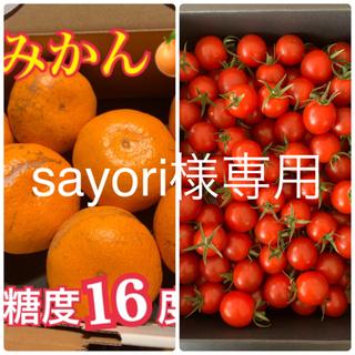 sayori様専用 幻の河内みかん 5kg  キャロルセブン500g セット(フルーツ)