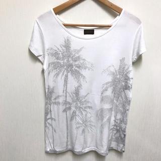 パリゴ(PARIGOT)のPARIGOT パリゴ パームツリー ストレッチ半袖TシャツM(Tシャツ/カットソー(半袖/袖なし))