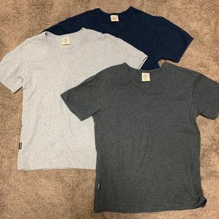 アヴィレックス(AVIREX)のAVIREX カットソー3色3点セット(Tシャツ/カットソー(半袖/袖なし))