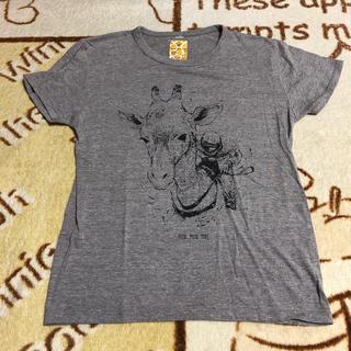 ユニゾンスクエアガーデン(UNISON SQUARE GARDEN)のUNISON SQUARE GARDEN Tシャツ Mサイズ(Tシャツ/カットソー(半袖/袖なし))