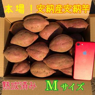 本場!熟成済み安納芋 M  5㎏ A級品(野菜)
