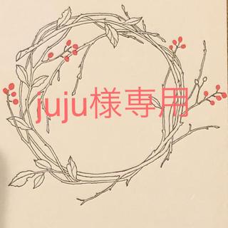 juju様専用 センペルビウム (その他)