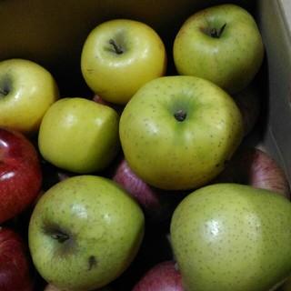 早いものがち。規格外 りんご詰め合わせ 四キロ(箱込み)(フルーツ)