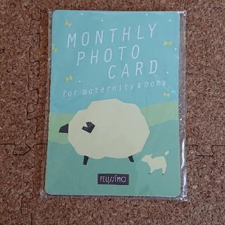 フェリシモ(FELISSIMO)の月齢カード(アルバム)