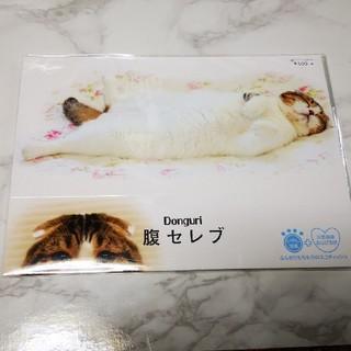 猫 ねこ 箱ティッシュケース(ティッシュボックス)