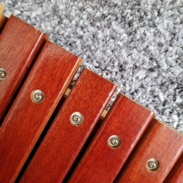 BorneLund(ボーネルンド)のワンちゃん シロホン 木琴 コイデ キッズ/ベビー/マタニティのおもちゃ(楽器のおもちゃ)の商品写真