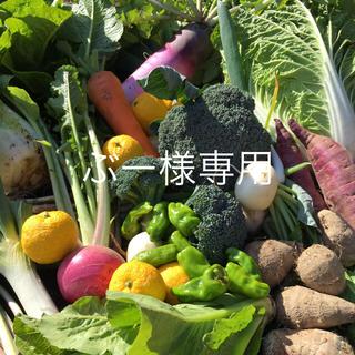 野菜BOX LLサイズ ぶー様専用(野菜)