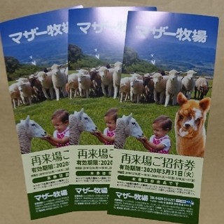 マザー牧場 招待券 無料券 3枚セット(遊園地/テーマパーク)