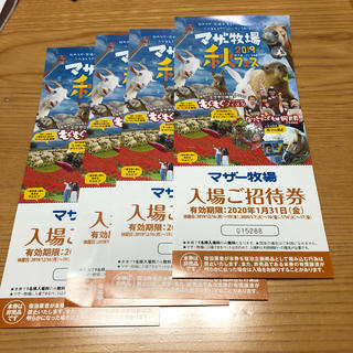 yuina 312様専用 マザー牧場入場券(遊園地/テーマパーク)