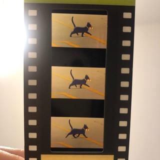 ジブリ(ジブリ)のジブリ美術館 入場券 猫の恩返し(その他)