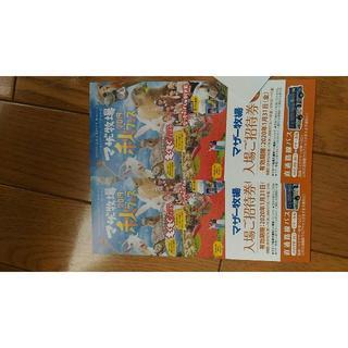 最終値下げ!千葉県「マザー牧場」入場招待券(2枚)(遊園地/テーマパーク)