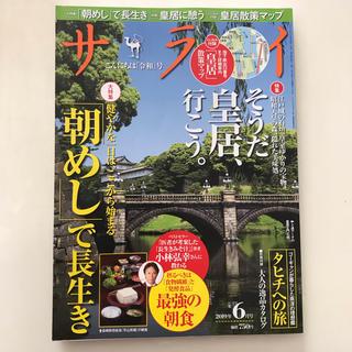 ショウガクカン(小学館)のサライ 2019年 06月号(趣味/スポーツ)