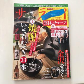 ショウガクカン(小学館)のサライ 2019年 07月号(趣味/スポーツ)