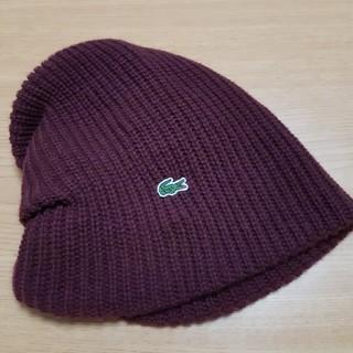 LACOSTE - ラコステ ニット帽 フリーサイズ