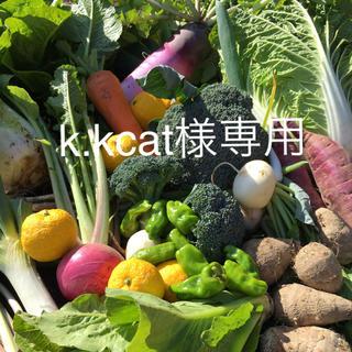 野菜BOX LLサイズ k.kcat様専用(野菜)