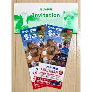 新品 マザー牧場 入場ご招待券 ペア 2枚セット 通常入場料:大人1名1500円(動物園)