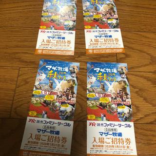 マザー牧場無料招待券 4枚セット(遊園地/テーマパーク)