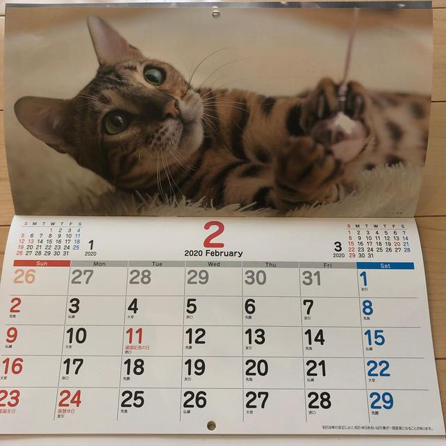 2 Cat 20 7//8-29 1//8