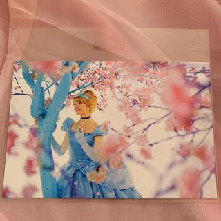 シンデレラ(シンデレラ)のディズニーリゾート35周年♡蜷川実花 シンデレラ ポストカード♡(キャラクターグッズ)