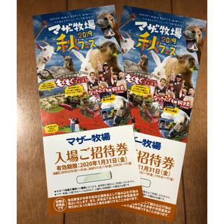 マザー牧場 入場ご招待券 2枚セット ペア 2020/1/31まで(動物園)