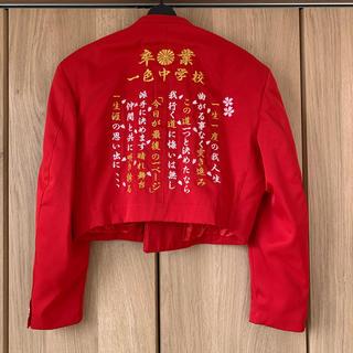 卒ラン 刺繍ラン カラー学生服(その他)