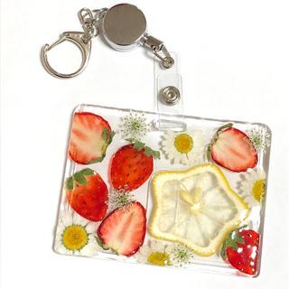 押しフルーツ スターレモンとミニいちごのパスケース(その他)