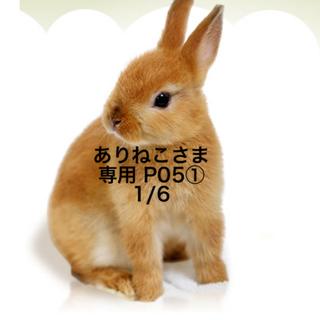 ★1/6★ありねこさま専用ページP(その他)