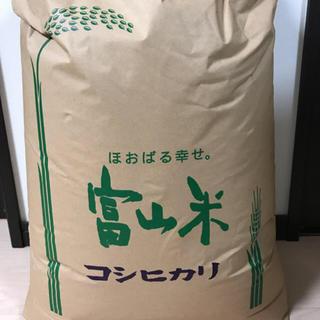 アンちゃん様専用 令和元年 新米 富山県産 コシヒカリ 精米済 送料込み(米/穀物)