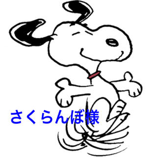 ロデオクラウンズ(RODEO CROWNS)のさくらんぼ様専用(Tシャツ/カットソー)