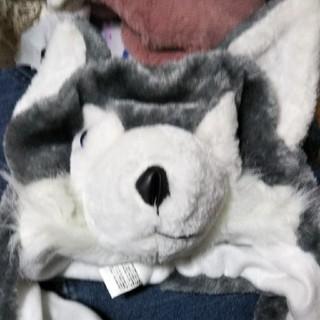 マンウィズアミッション(MAN WITH A MISSION)のMAN WITH A MISSIONフェスオオカミ帽子(ミュージシャン)