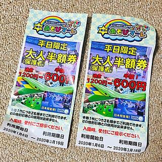 東京 あそびマーレ 平日 半額チケット 2枚(遊園地/テーマパーク)