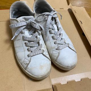 アディダス(adidas)の白スニーカー(スニーカー)