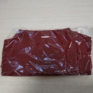 エニィスィス(anySiS)のanysis ニット 2020 福袋(ニット/セーター)