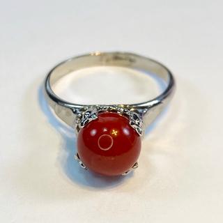 血赤珊瑚 9号 シルバー リング 送料込み(リング(指輪))